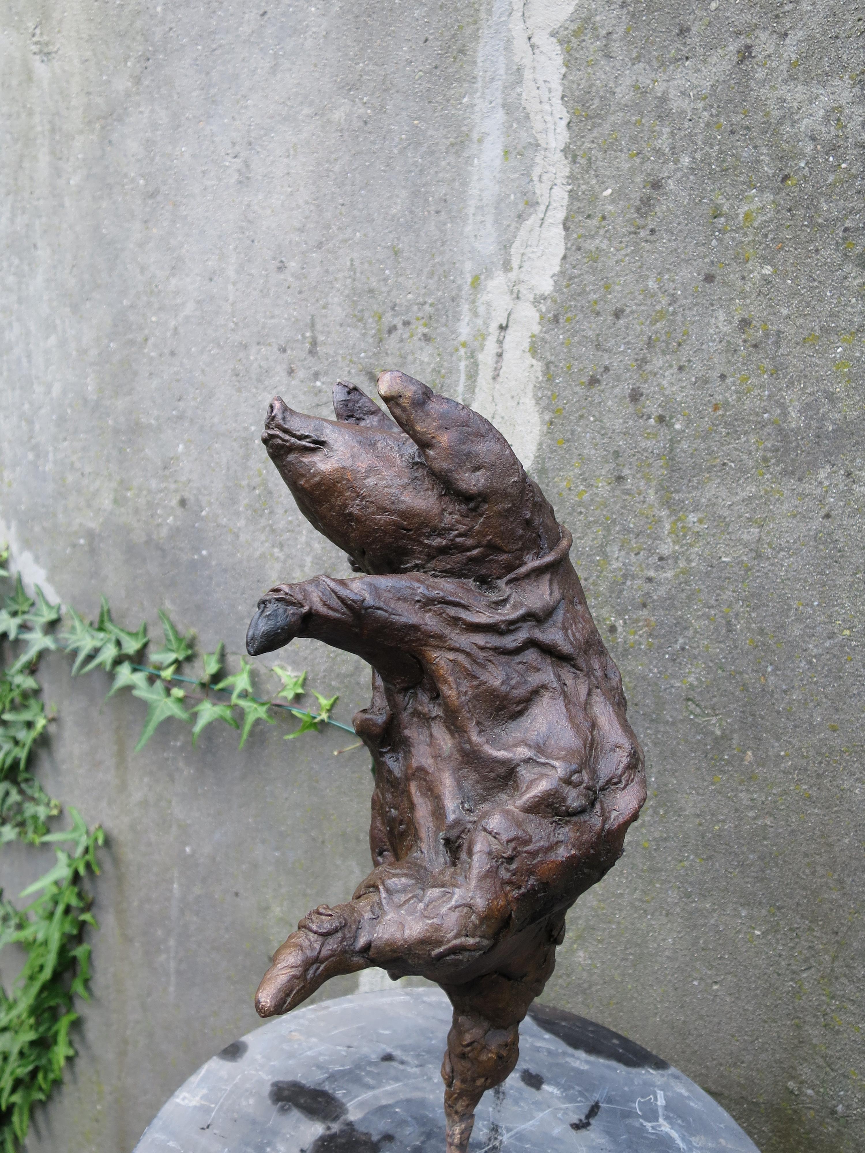Dansend Varken