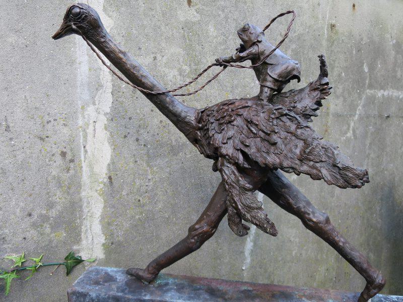 Kikker berijdt Struisvogel